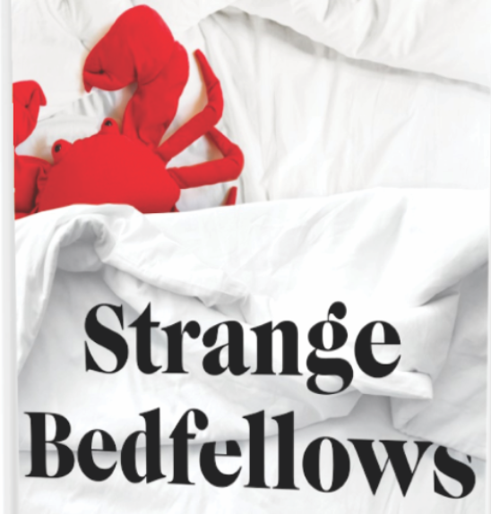 Strange Bedfellows - by Ina Park